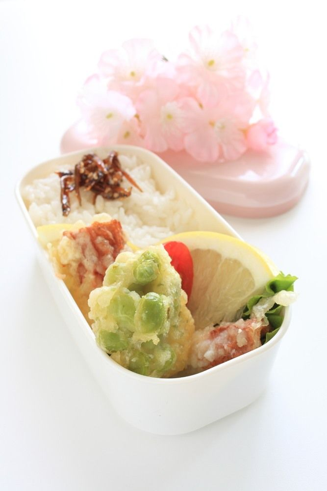 Bento-box: de Japanse lunchbox