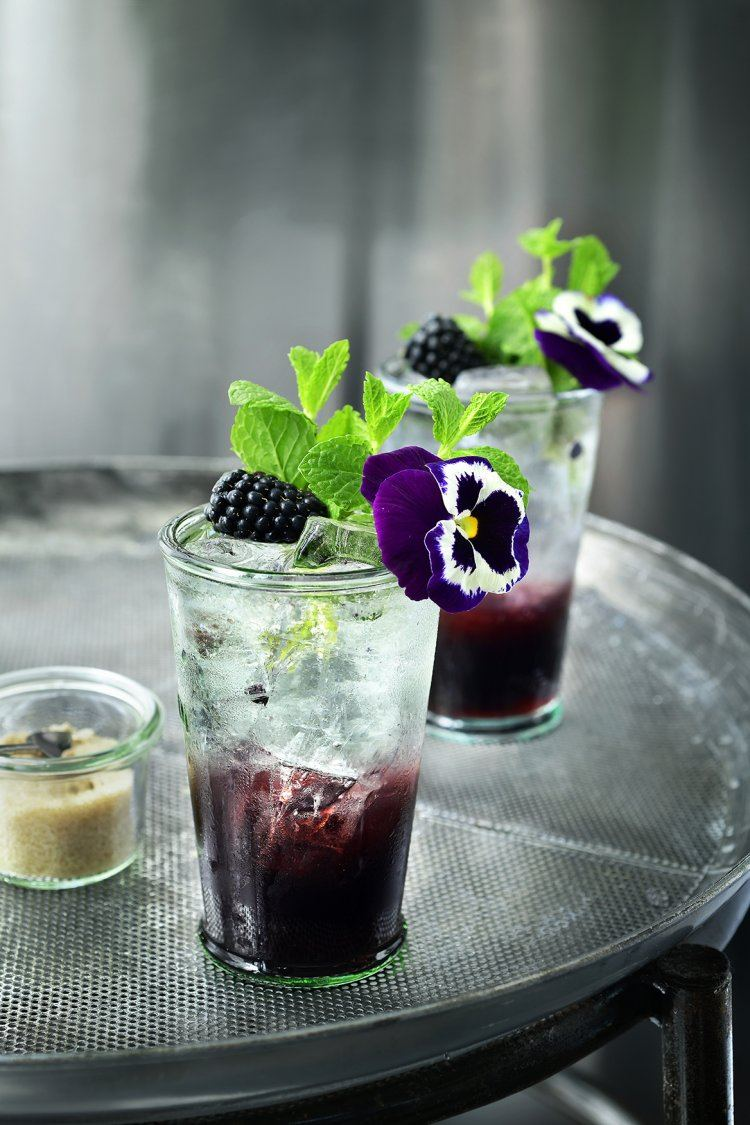 Blackberry Mint Spritzer