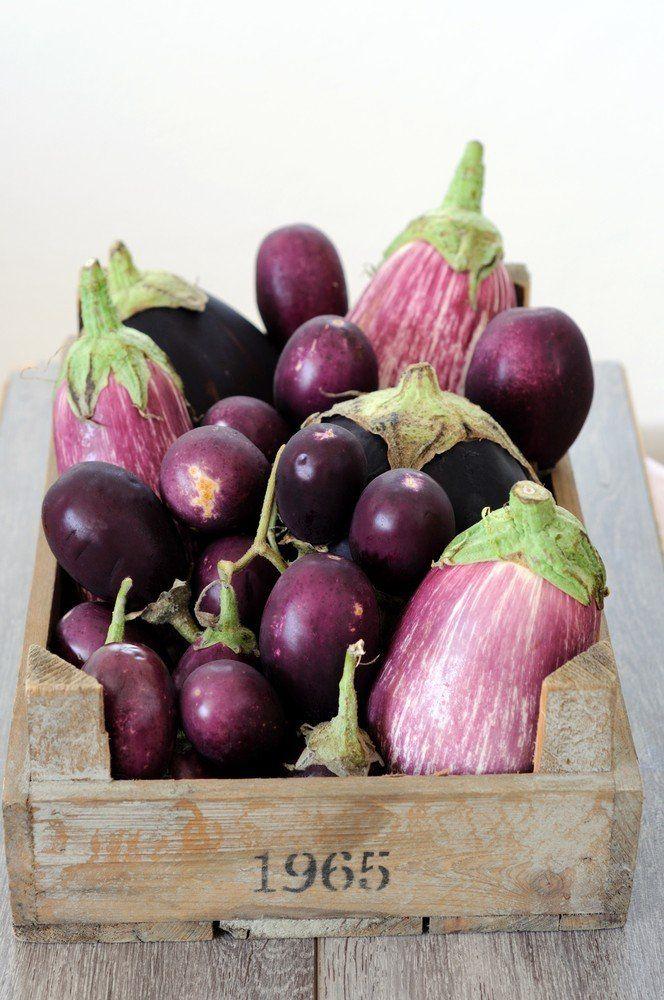 Samosa met geroosterde aubergine en tomatencompote