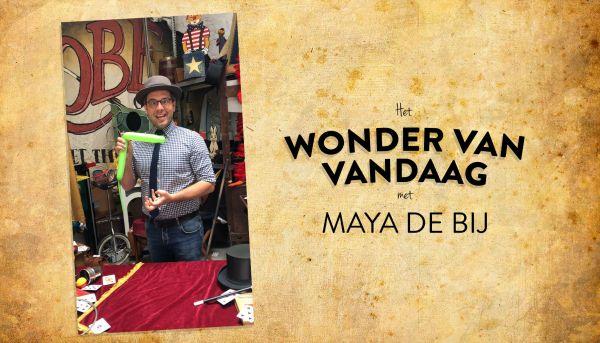 Het wonder van vandaag met Maya de Bij!
